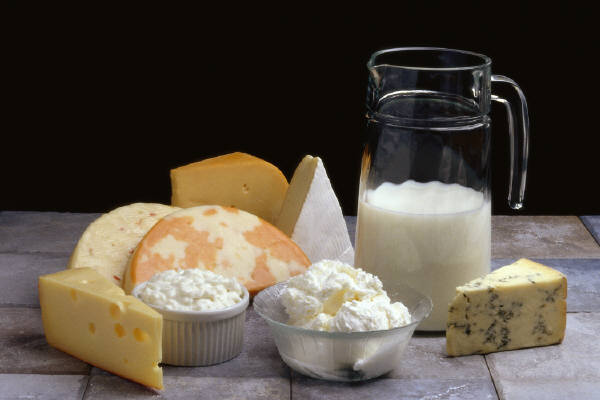 写真:乳製品